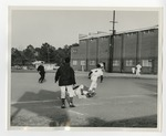 A baseball game by Lonnie W. Fleming Sr.
