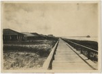 Clubhouse and pier, looking north, Myrtle Beach, S.C. by Horry County Historical Society