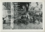 Baby with pony pulling dog in small wagon by Horry County Historical Society
