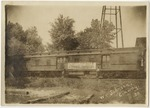 A traincar full of live honey bees. by Horry County Historical Society
