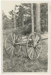 Scene in Horry, Photo of a cart by Horry County Historical Society