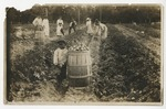 Myrtle Beach Farm Co. around 1910. by Horry County Historical Society