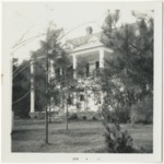 The Bird House or the Spivey House by Horry County Historical Society