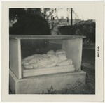 The Beaty Children's tomb by Horry County Historical Society