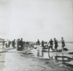 Men and women at the ocean's edge by Horry County Historical Society